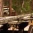 Hooter's Hut Wagon