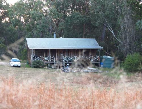 Hooter's Hut Cabin